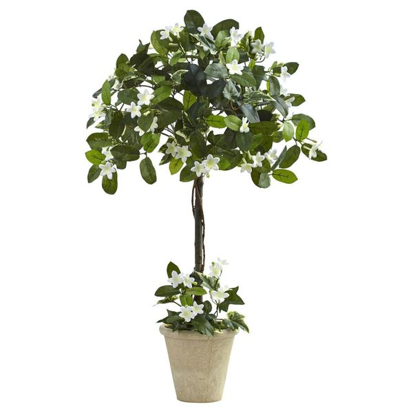 """Get it at <a href=""""https://www.target.com/p/stephanotis-topiary-with-planter-green-3/-/A-50402896"""" target=""""_blank"""">Target</a>"""