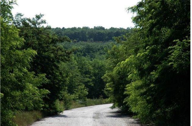 Ο δρόμος στο πάρκο αναψυχής...
