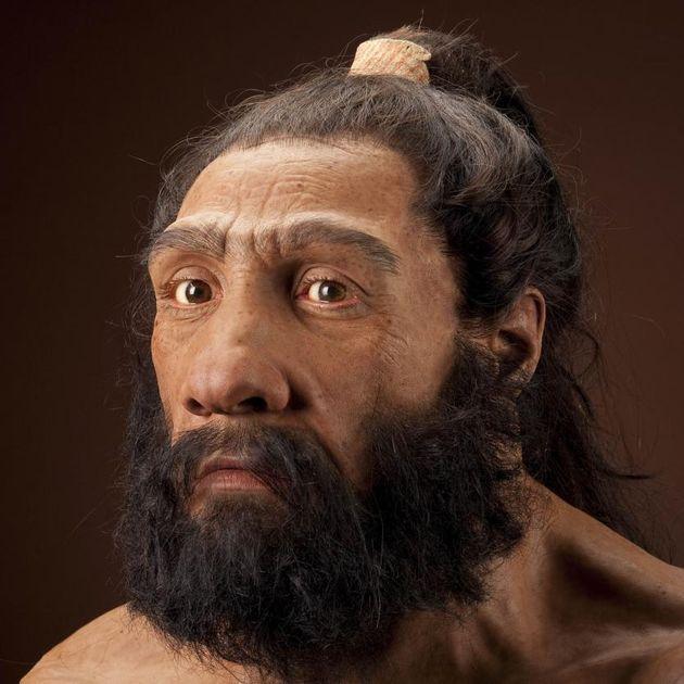 Homo neanderthalensis, αρσενικός. Αναπαράσταση βασισμένη στο δείγμα Shanidar 1 από τον John Gurche