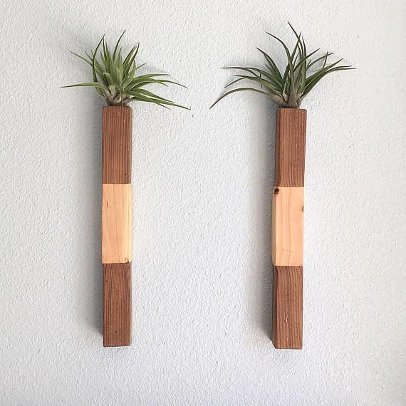 "Get the set on <a href=""https://www.etsy.com/listing/540445973/reclaimed-wood-air-plant-holders-set-of?ga_order=most_relevant"