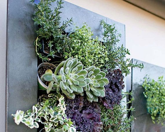 "Get it on <a href=""https://www.etsy.com/listing/482117146/planter-succulent-planter-wall-planter?ga_order=most_relevant&g"