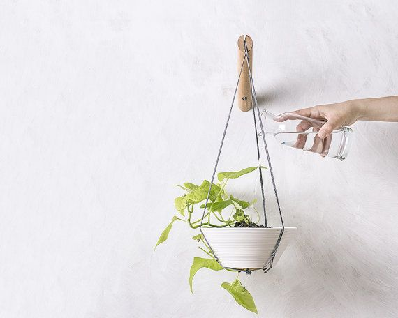 20 Indoor Wall Planters To Take Your Houseplants To New Heights