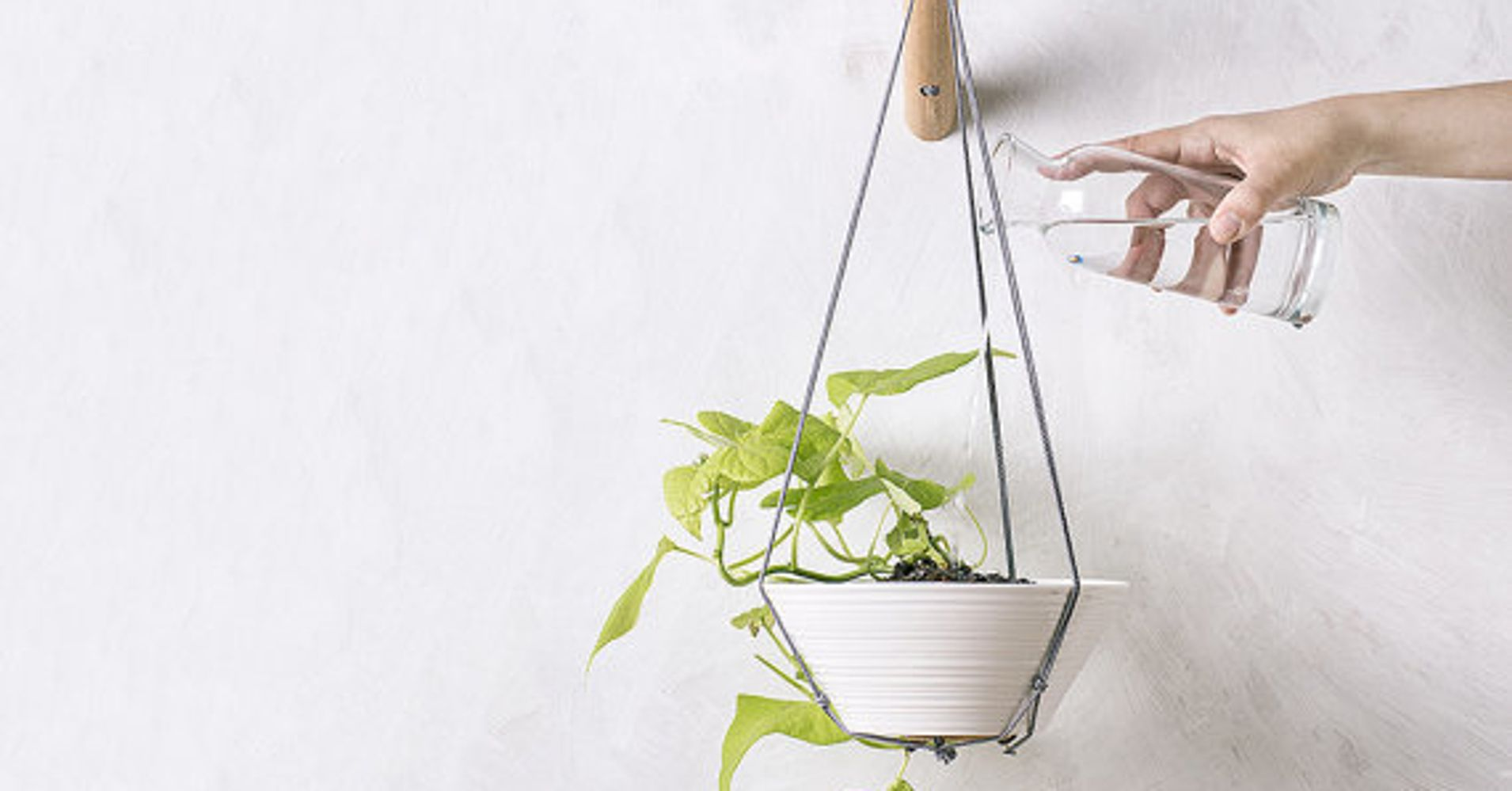 20 Indoor Wall Planters To Take Your Houseplants To New