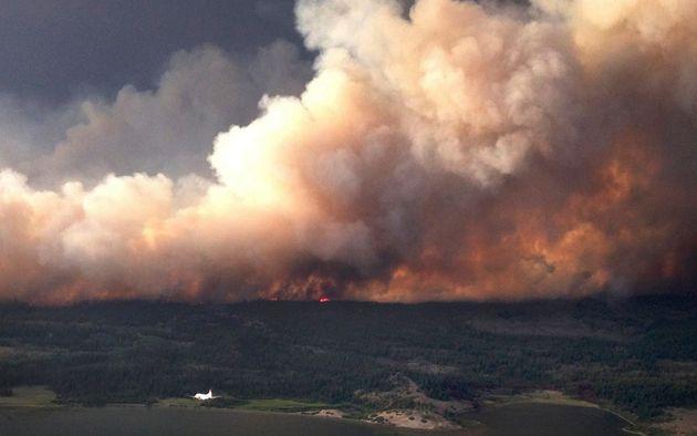 캐나다 산불이 대만 '휴지 대란'으로 이어지고