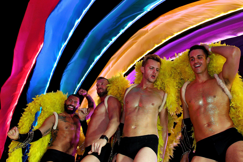 Gay gras mardi sex