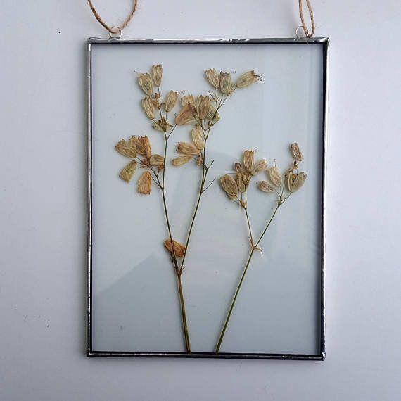 "Get it from <a href=""https://www.etsy.com/listing/582491339/pressed-flower-frame-pressed-plants?ga_order=most_relevant&ga"