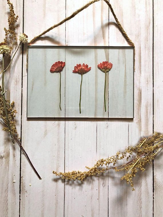 """Get it from <a href=""""https://www.etsy.com/listing/498613680/real-pressed-flower-floating-frame-glass?ga_order=most_relevant&a"""