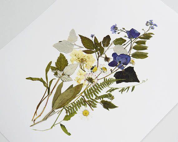 "Get a set of 2 prints from <a href=""https://www.etsy.com/listing/489040428/botanical-print-set-pressed-flower-art?ga_order=mo"