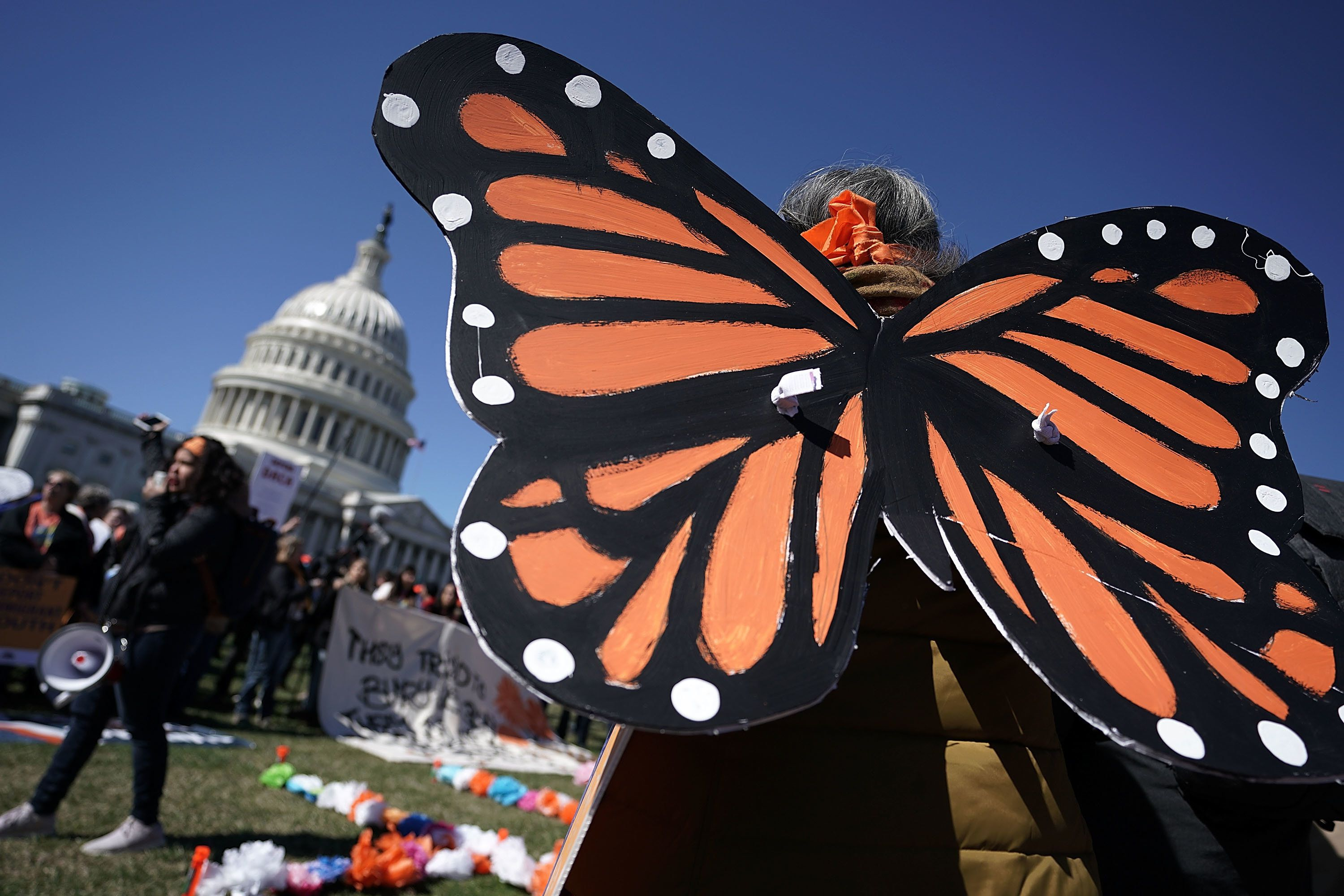 WASHINGTON, DC - MARCH 05:  An immigration activist wears custom butterfly wings during a protest March 5, 2018 on Capitol Hill in Washington, DC. Congress has not come up with a fix as today marks the deadline President Donald Trump has set to end The Deferred Action for Childhood Arrivals (DACA) program.  (Photo by Alex Wong/Getty Images)