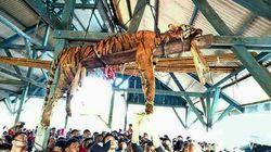 Βασάνισαν, σκότωσαν και κρέμασαν σε δημόσιο κτήριο σπάνια τίγρη της Σουμάτρας. Νόμιζαν πως ήταν υπερφυσικό