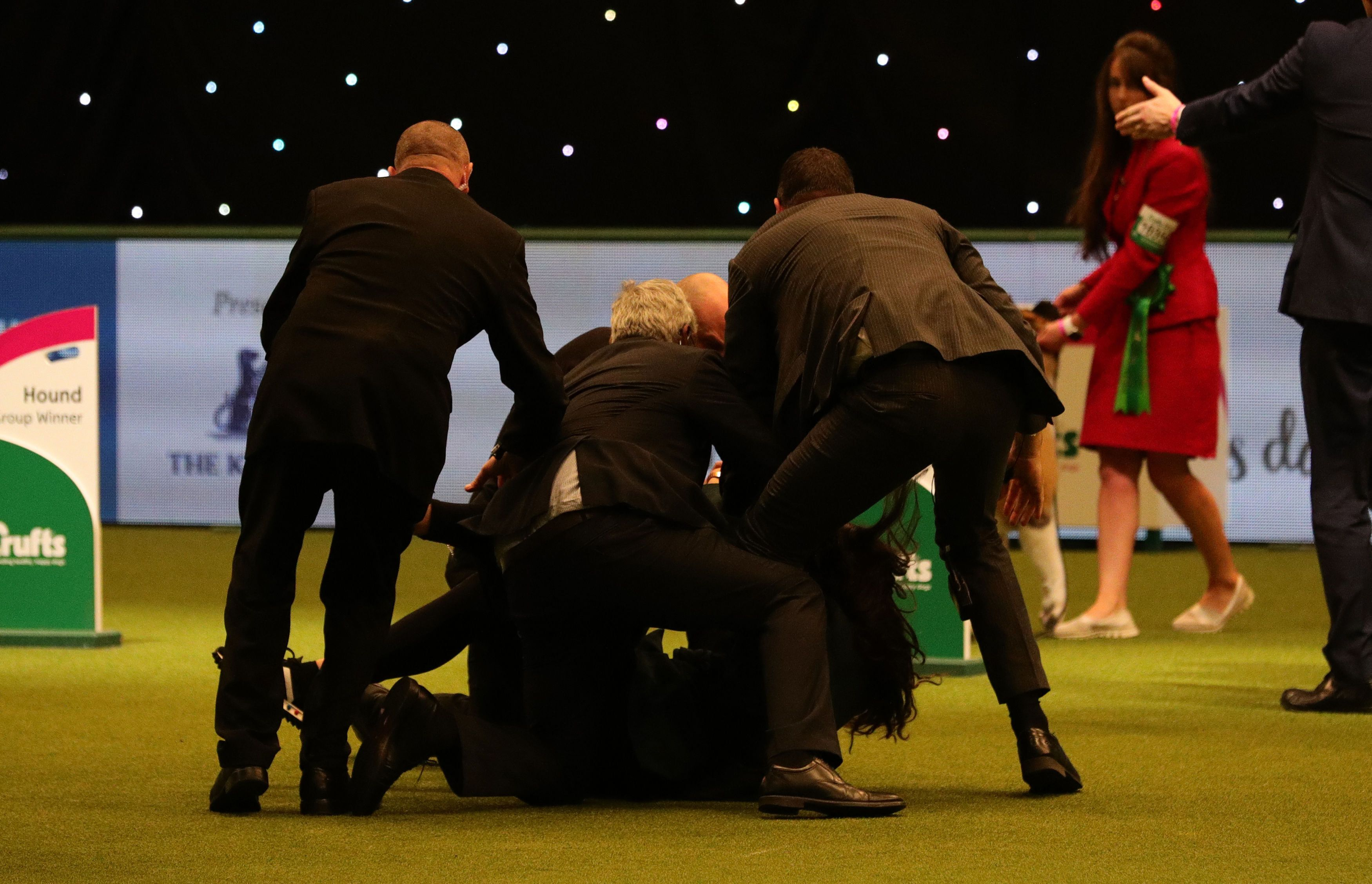 Tease wins Crufts amid protest at the NEC