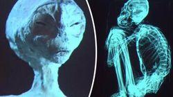 Peru: Forscher untersuchen angebliches Alien-Skelett – das Ergebnis ist erstaunlich