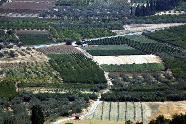 Μέχρι τις 15 Μαΐου η τακτοποίηση των αγροτεμαχίων εντός δασικών