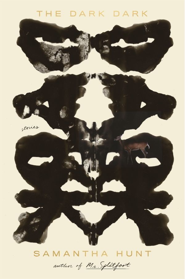 """""""In <i>The Dark Dark</i>, Samantha Hunt has a knack for capturing the mundane, and more often painful or disgusting, inner th"""