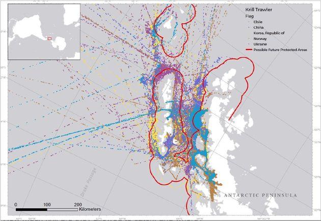 그린피스가 공개한 크릴 조업 어선들의 활동 구역. 대륙과 아주 가까운 곳까지 접근하는 것을 확인할 수