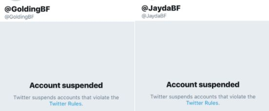 Screengrabs showing Golding and Fransen's Twitter accounts