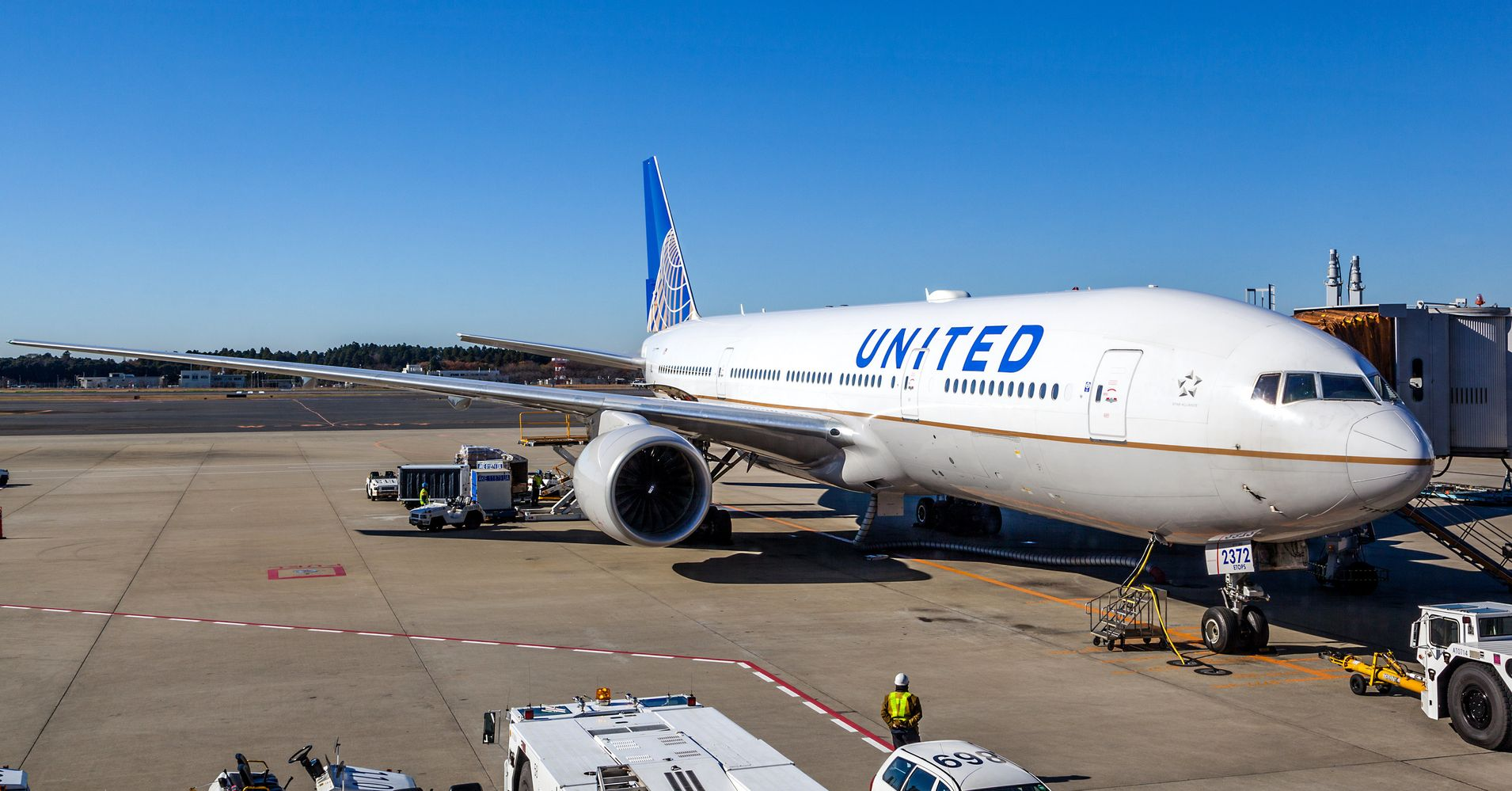 United Airlines Mistakenly Flies Family S Dog To Japan