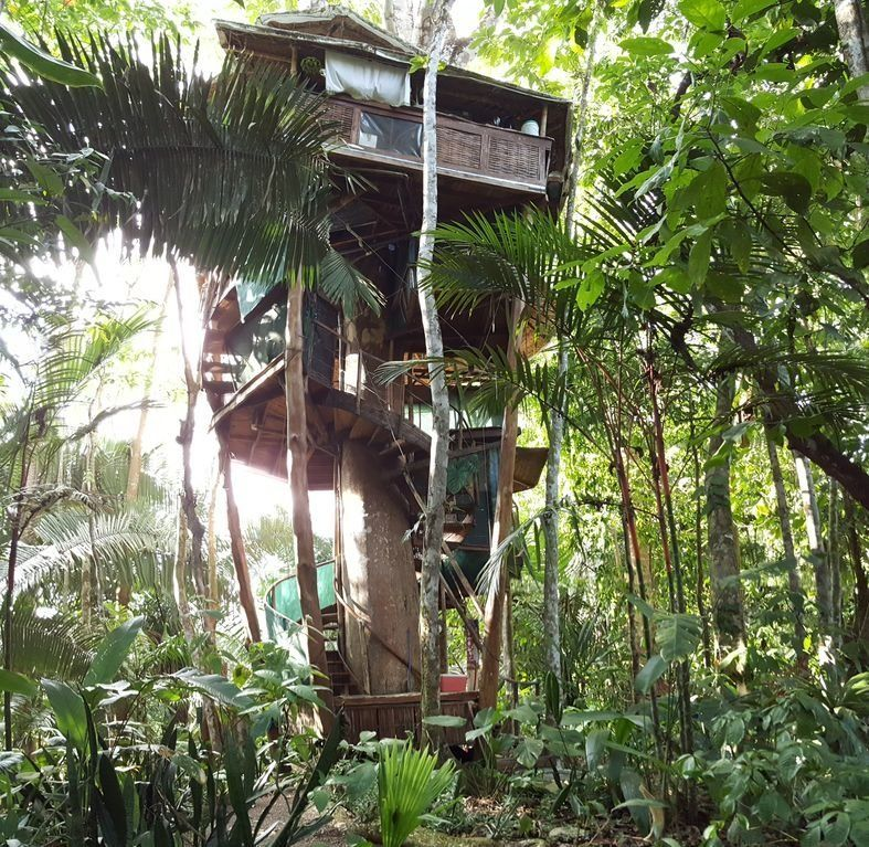 "This treehouse sits 60-feet up and includes ocean and jungle views. <a href=""https://www.homeaway.com/vacation-rental/p292693"