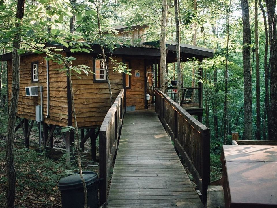 Breathtaking Tree House Vacation Rentals You Can Actually