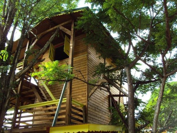 "This stunning treehouse is built on three levels and showcases jaw-dropping views of tropical vegetation. <a href=""https"