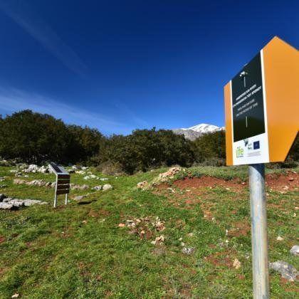 Βραβεία Natura 2000: Πέντε ελληνικές υποψηφιότητες στον τελικό. Ψηφίζουμε όλοι τον υποψήφιο της επιλογής