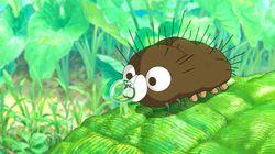 미야자키 하야오의 신작 '에벌레 보로'를 미리