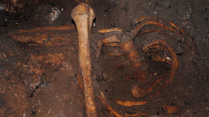 Les plus anciennes traces d'ADN en Afrique découvertes à Taforalt au Maroc