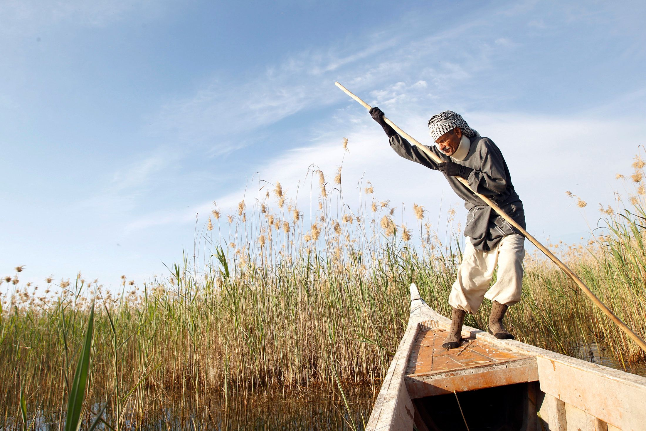 Marsh Arab Abu Sabah paddles his boat at the Chebayesh marsh in Nassiriya, 300 km (185 miles) southeast of Baghdad on Februar