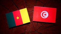 Un groupe armé enlève deux Tunisiens au