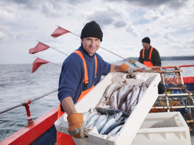 The EU will still set fishing quotas during the transition period between March 2019 and December 2020...