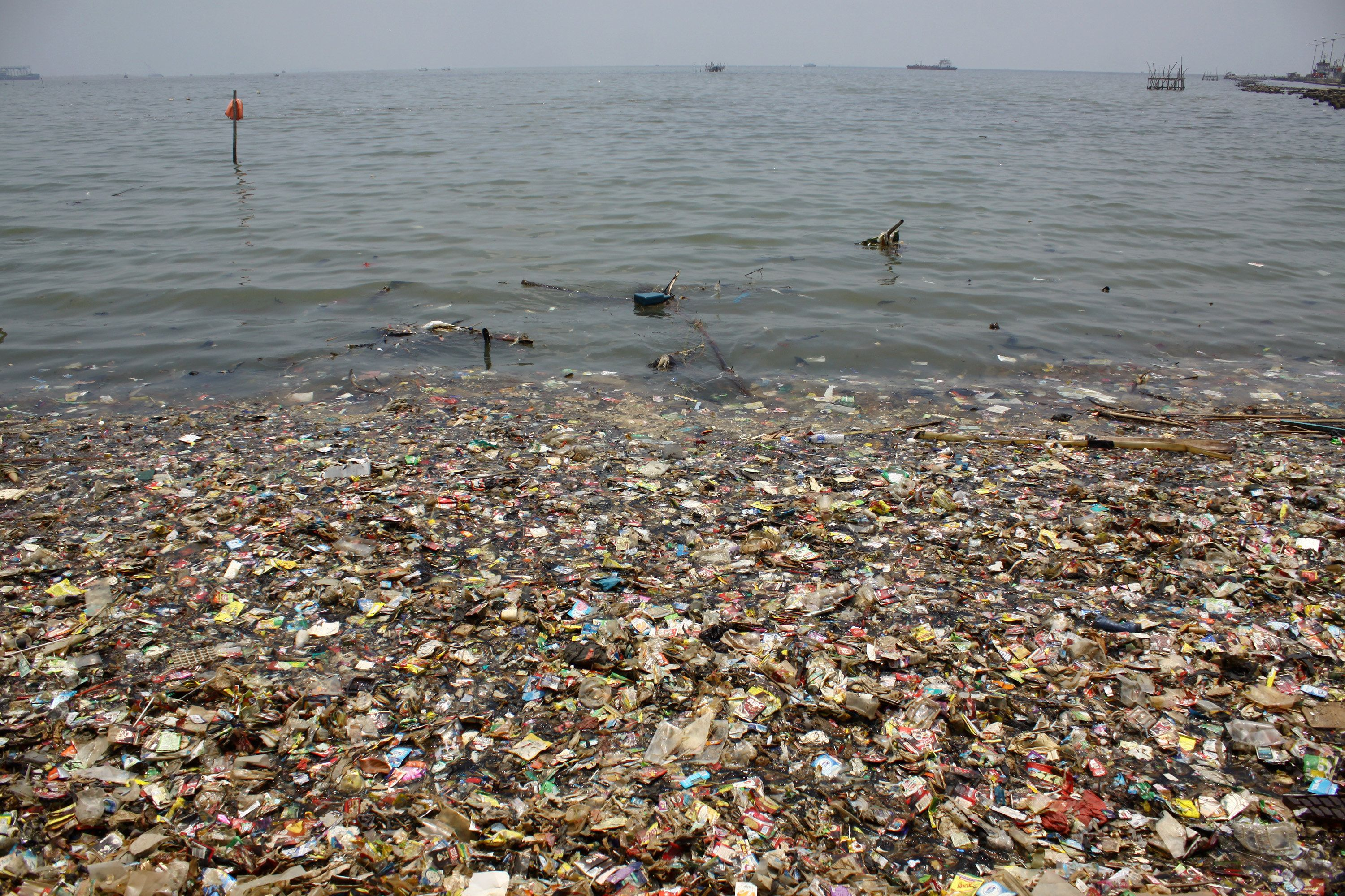 The Amount Of Ocean Plastic Could Treble In The Next 10