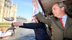 Nigel Farage Throws Lots Of Dead Fish Into The River