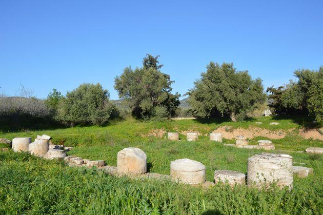 Σπόνδυλοι κιόνων του ναού της Δήμητρας και της Κόρης (Θορικός, 5ος αι.