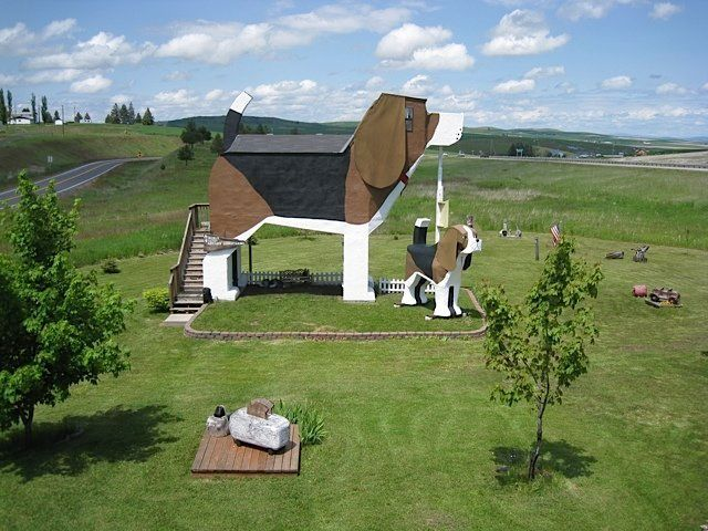 """<a href=""""https://www.huffingtonpost.com/entry/this-beagle-shaped-bed-and-breakfast-is-a-dog-lovers-paradise_us_57ced310e4b0a2"""