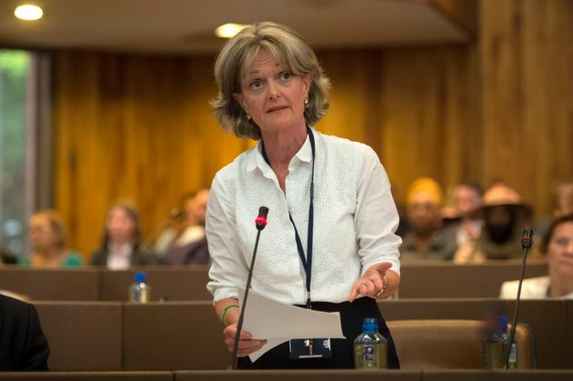 Council leader Elizabeth Campbell (pictured in shortly after the