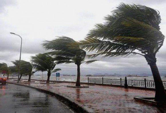Des vents forts souffleront samedi sur plusieurs wilayas du pays