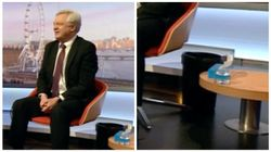 David Davis Brings Sick Bucket Onto Andrew Marr