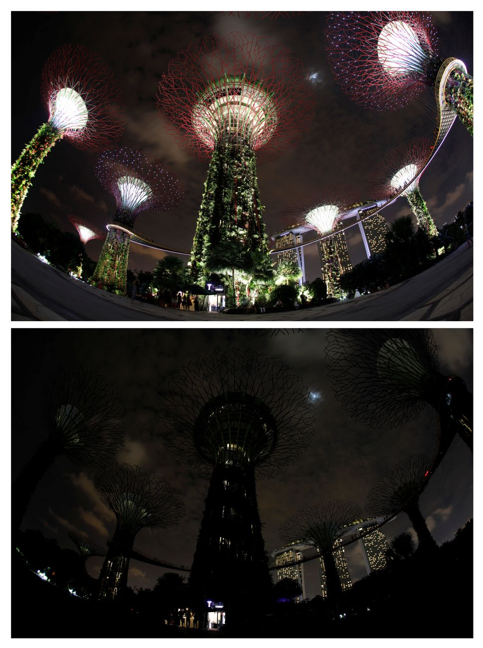 Giant concrete tree-like structures called 'Supertrees' are seen before (top) and after the lights were dimmed to mark E