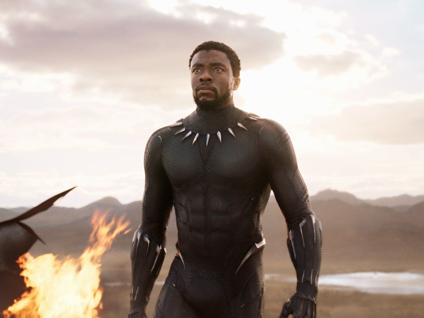 'Black Panther' has broken yet another record