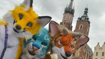 Members of different Furry Fandom Conventions pose for a photo at Adam Mickiewicz's monument in Krakow Main Market Square. On Friday, September 1, 2017, in Main Market Square, Krakow, Poland. (Photo by Artur Widak/NurPhoto via Getty Images)