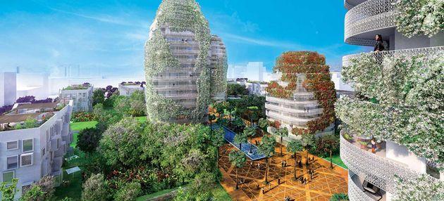 Les premières tours végétales d'Afrique et du Moyen-Orient viennent fleurir