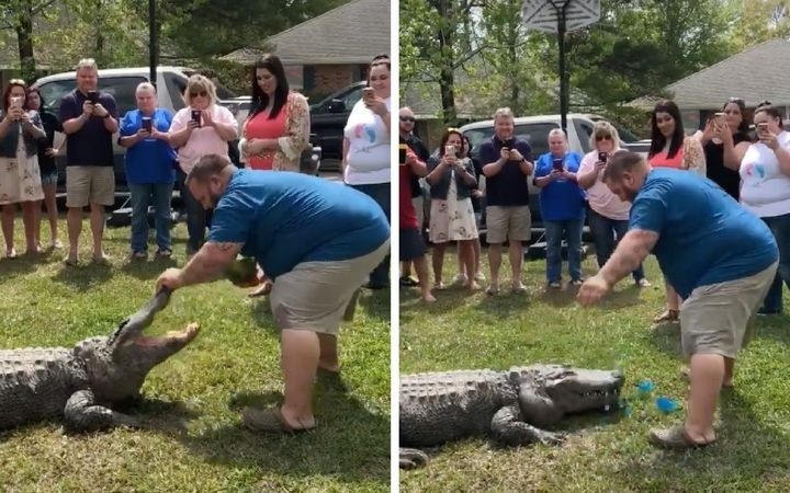 Mike Kliebert with Sally the alligator at his baby's gender reveal party.