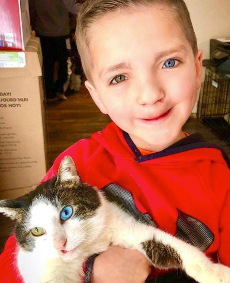 Eltern schenken gemobbtem Jungen eine Katze – das Tier ist genauso besonders wie er