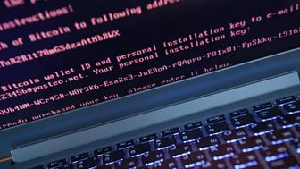 YEKATERINBURG, RUSSIA - JUNE 28, 2017: A message demanding money on a computer hacked by a virus known as Petya. The Petya ransomware cyber attack hit computers of Russian and Ukrainian companies on June 27, 2017. Donat Sorokin/TASS (Photo by Donat Sorokin\TASS via Getty Images)