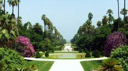 Conférence internationale sur le jardin d'Essai d'El Hamma en préparation de sa classification