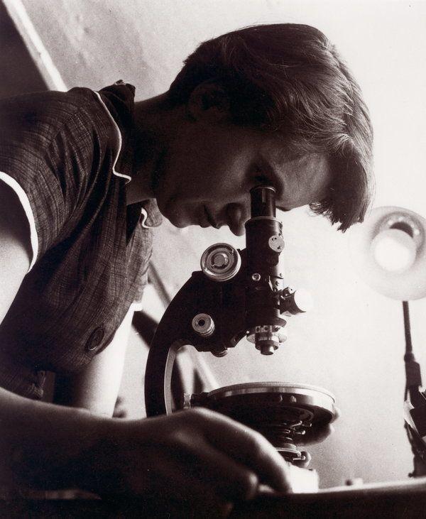 Die britische Chemikerin Rosalind Elsie