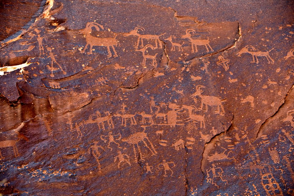 Part of the Sand Island Petroglyph Panel was originally part of the Bears Ears National Monument but is no longer in the monu