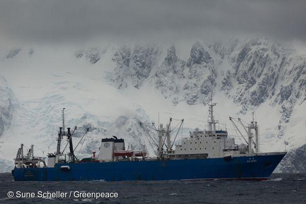 남극해 트리니티 섬 근처 해역에서 발견된 한국 크릴 어선