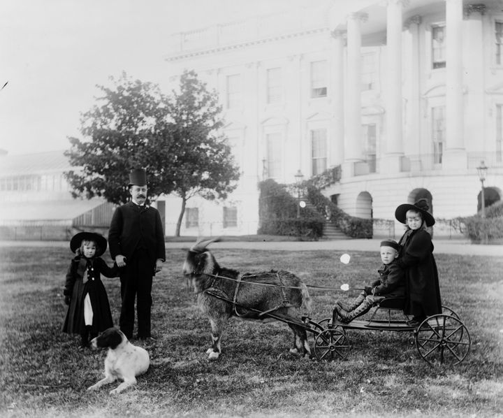 President Harrison's son, Russell, outside the White House with his children and family pets.