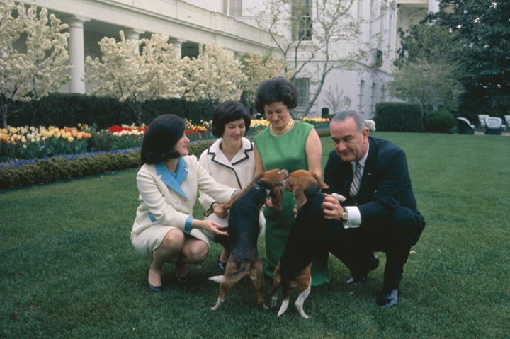 The Johnson family posing with their beagles in 1964.